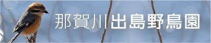那賀川出島野鳥園